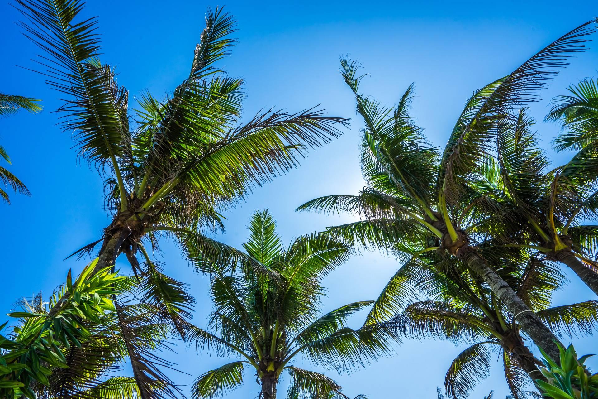 海南·三亚+西岛·4天3晚半自由行